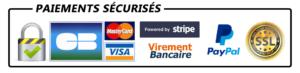 icônes de paiements sécurisés
