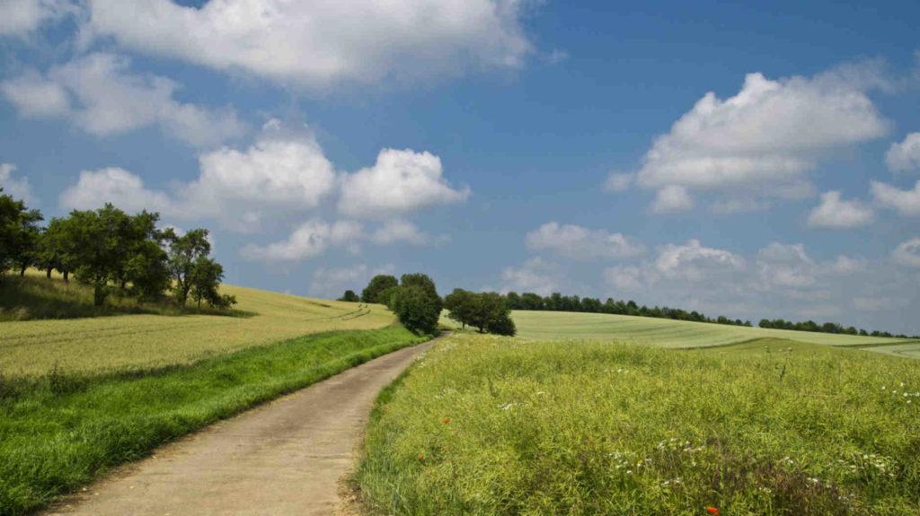 Photo d'un champ à la campagne